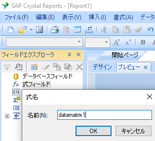data-matrix 新規 式 crystal reports